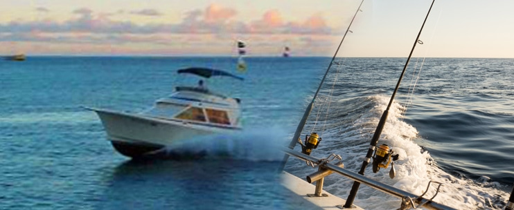 Inter-Island Sportfishing – Sea Hawk