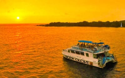 Captain Cook Dinner Cruise with Body Glove Cruises