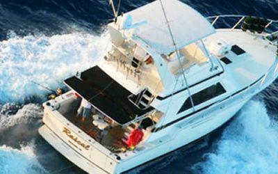 Rascal Charters – Deep Sea Sportfishing