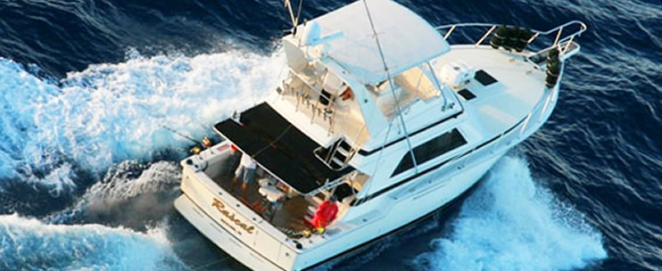 Rascal Charters – Deep Sea Sportfishing