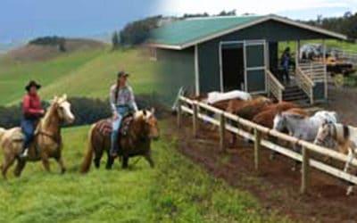 Na'alapa Stables – Kahua Ranch Adventure