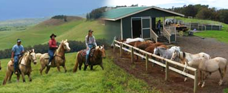 Na'alapa Stables – Kahua Ranch Adventure