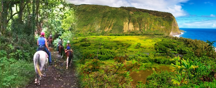 Na'alapa Stables – Waipi'o Valley Adventure