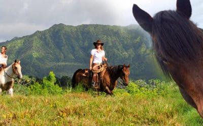 Princeville Ranch – Private Kauai Horseback Ride