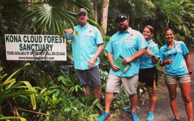 Kailani Tours Hawaii: Coffee, Cloud Forest and Brewery Adventure