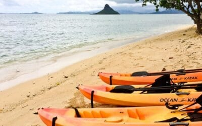 Active Oahu Tours – Beach Gear Rentals