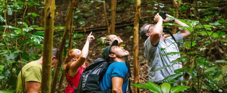 Hawaii Forest & Trail – Birds & Wildlife of Oahu