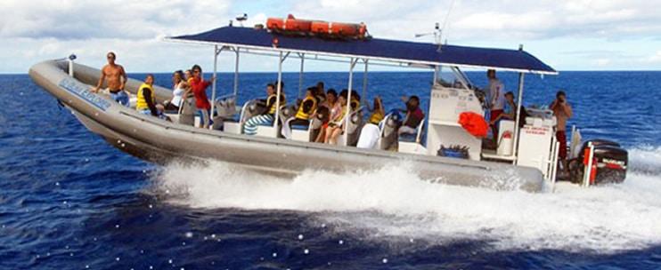 Ko Olina Ocean Adventures – Oahu Snorkeling & Dolphin Encounter