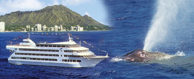 Star of Honolulu – Premier Whale Watch Cruise & Lunch