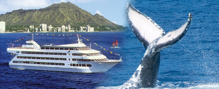 Star of Honolulu – Premier Whale Watch Cruise