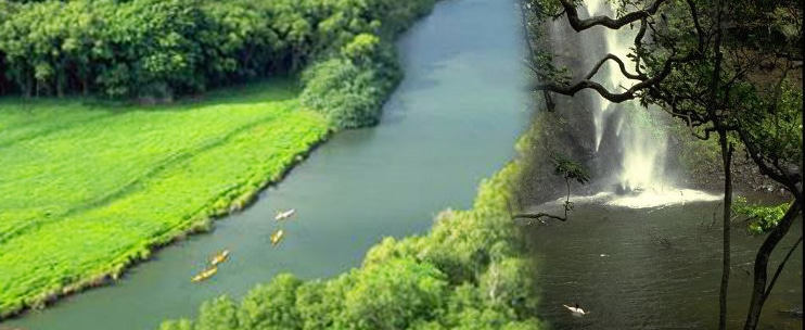 Sacred Falls Paddle and Hike by Kayak Kauai