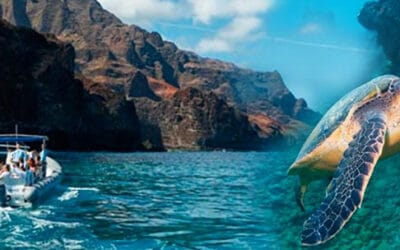 Holo Holo Charters – Na Pali Exploration and Snorkel (Hanalei Departure)