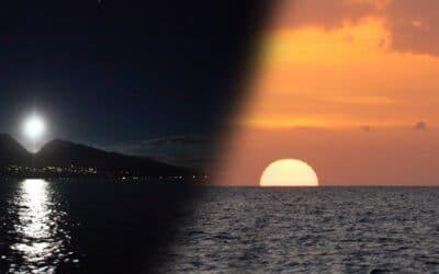 Pacific Whales Foundation: Full Moon Rhythms Cruise (Ma'alaea)
