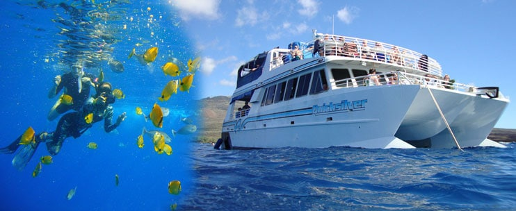 Quicksilver Charters – Lanai Snorkeling and Dolphin Excursion