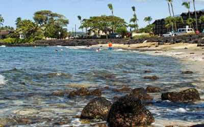 SeaFun Kauai – Beach Snorkel Tour