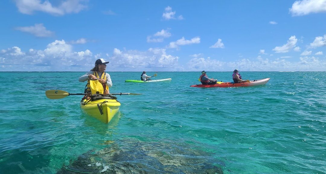 Twin Islands Guided Kayak Tour by Kailua Beach Adventures
