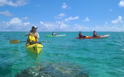 Twin Islands Guided Kayak Tour by Kailua Beach Adventures