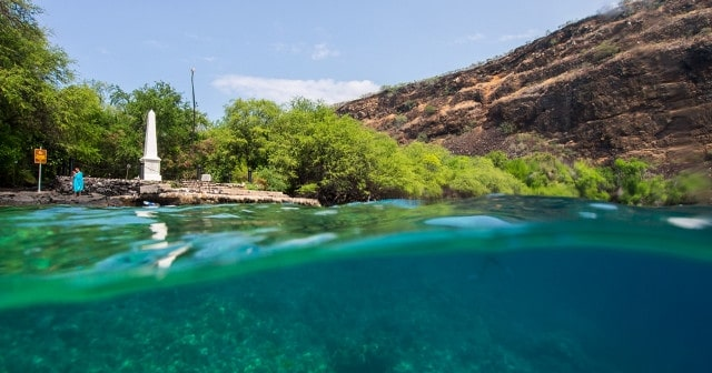 Afternoon Group Discount – 6-12 Guests – $20 Off per person – Kayak, Dolphin & Snorkel