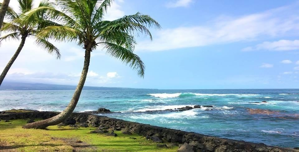 Beach Snorkel – Sea Turtle Lagoon and Black Sand Beach – Hilo, Big Island HI