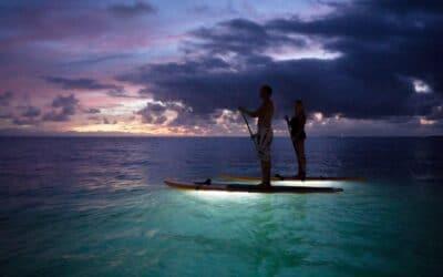 Twilight GLOW Paddle – Haleiwa, Oahu